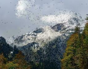 The first snowfall in autumn